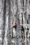 Rock Climbing On Malham Cove
