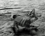 Bas at the water