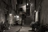 Via e Salita San Simone