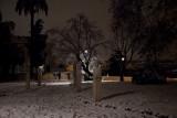 Giardini del Gianicolo