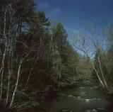 Brush Creek Drive By Snapshot