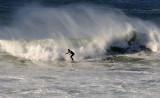 Scarborough Wombarra Surf Riders