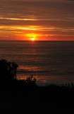 sunrise wombarra