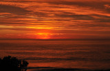 sunrise wombarr too