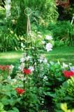 Tom's Garden, Saginaw, Michigan, USA