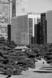 Otemachi from Chiyoda Park