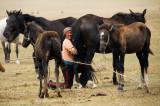 Kyrgyzstan25363wr.jpg