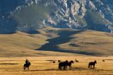 Kyrgyzstan25524wr.jpg