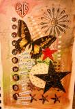 butterflyjournal.jpg