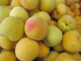 Yellow peaches