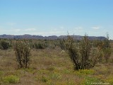 Meteorite crater Gosse Bluff