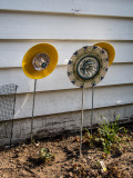 Dishes/Sunflowers