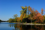 Local Park, Almonte