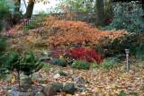 Fall / Efterår