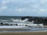 Vest kysten