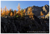 Autumn at Lake O'Hara - up to Opabin Plateau