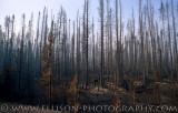 Canadian Rockies: Kootenay National Park