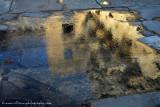 Aspendos reflection