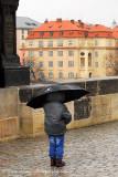 the umbrella boy