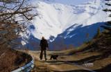Glynis Walking the Dog Nola