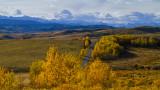 Longview Landscape