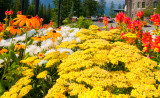 Banff Alberta August 2012