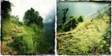 Nepal_I_038.jpg