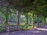 6-12-2011 Botanical Garden Arbor.jpg