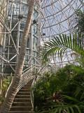 6-12-2011 Botanical Garden 10.jpg