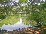 6-12-2011 Botanical Garden 16.jpg