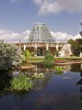 6-12-2011 Botanical Garden 8