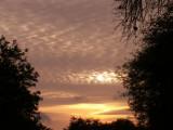 3-15-2012 Sunset 3.jpg