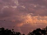 4-11-2012 Sunset 3.jpg