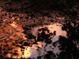 5-11-2012 Thunderstorm Reflection 5.jpg