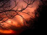 1-26-05 Sunset3.JPG