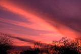1-9-2008 Cirrus Sunset.jpg