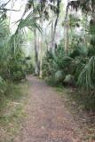 Wild Orange Grove Trail