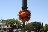 Mickey's Not So Scary Halloween Decorations