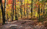 Smoky Mountains Fall 2011