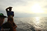 Chasing Dolphins (Mati)
