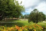 Capitol Garden