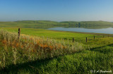 prairie lake, nw North Dakota