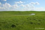 Prairie landscape.