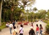 Jardin Botanico de Medellin.jpg