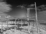 North West of Streaky Bay - BW