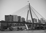 ANZAC Bridge Monochrome