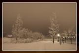 Winter Night Scene 1