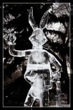 Ice Sculpture 3 - 8093.jpg