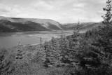 Skógar í Þorskafirði