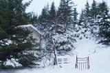 Skógaóðalið 29 Des. 2007